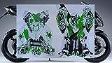 2008-2010 Kawasaki Ninja ZX10 ZX10R GREEN GRAPHICS KIT