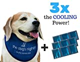 The Dog's Right! Cooling Collar for Dogs Bandana with 3 Ice Packs to Chill Your Pet (Size 14 to 16 inches, Adjustable for Medium Sized Dogs)