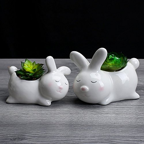 Ucoolbila Home Decor Succulent Pot, Cute Animal Shaped Cartoon Planter Pots (Mom&Child Rabbits)