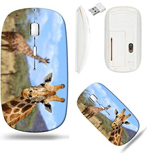 - Liili Wireless Mouse White Base Travel 2.4G Wireless Mice with USB Receiver, Click with 1000 DPI for notebook, pc, laptop, computer, mac book IMAGE ID: 38031008 Giraffe in front Amboseli national park