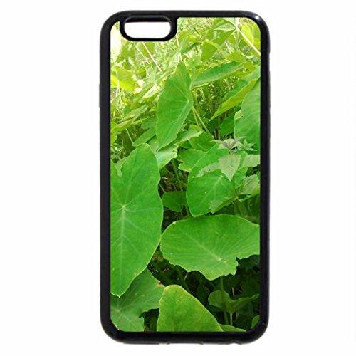 iPhone 6S / iPhone 6 Case (Black) Colocasia