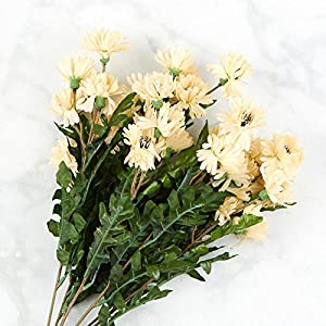 Factory Direct Craft Beige Poly Silk Cornflower Bush | for Indoor Decor 62
