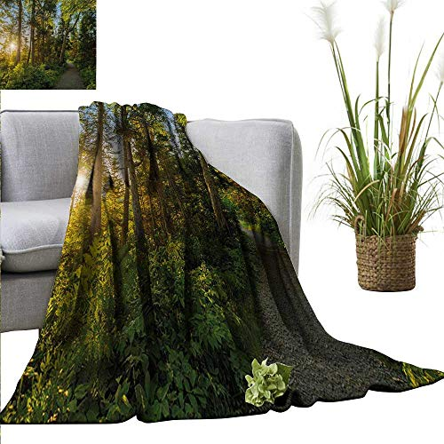 homehot Landscape Reversible Blanket National Park in Cape Breton Highlands Canada Forest Path Trees Tranquility Photo All Season Premium Bed Blanket 54