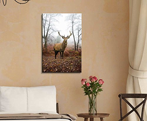 Beautiful Red Deer Stag in Foggy Misty Forest Landscape in Autumn Fall Wall Decor Wood Framed