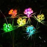 Doingart Garden Solar Lights Outdoor - 2 Pack Solar Powered Lights Garden Stake Lights with 24 Ball Solar Flower Lights, Multi-Color Changing LED Solar Decorative Lights for Backyard, Patio, Lawn