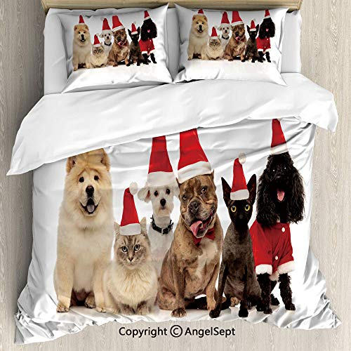 AngelSept Lightweight Coverlet 3 Piece with 2 Pillow Shams,Team of Six Pets Wearing Santa Hats Panting Charcoal Grey Vermilion Pastel Brown and Cocoa,Wrinkle Free,King Size ()
