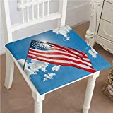 Egg Carton Foam Pad Mikihome Squared Seat Cushion July Decor Two Dogs Watching Parade with Flags Taking Photos Behind The Fences Garden Patio Home Kitchen Office Sofa Seat Pad 28