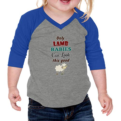 Only Lamb Babies Can Look This Good Cotton/Polyester V-Neck Boys-Girls Infant Raglan T-Shirt Baseball Jersey - Gray Royal Blue, 12 ()