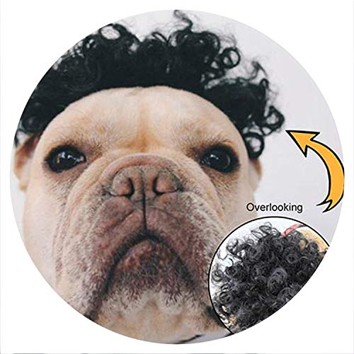 Funny Pet Dog Wig Hat Colorful Soft Synthetic Hair Cap for Dogs Lovely Gorra perro Casquette Chien Birthday Cosplay Halloween,Red,XS]()