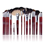 Best SHANY Cosmetics Quality Makeup Brushes - SHANY Pro Brush Set Natural Goat & Pony Review