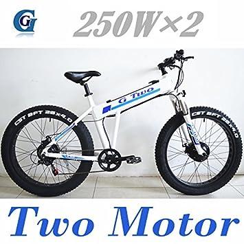G1 TD29Z Double Drive Potente Bicicleta eléctrica de 26 Pulgadas, Motor sin escobillas de 250W