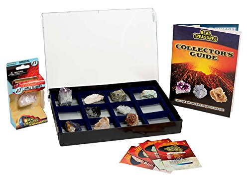 ComputerGear Geology Earth Science Classroom Rock Rocks Minerals Gem Collection Acitivity Science Kit