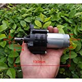 Wind power Wind Driven DC Generator Dynamo Hydraulic Test 6V 12V 24V Motor