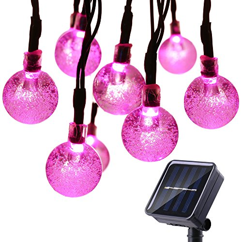 Pink Led Holiday Lights in Florida - 9