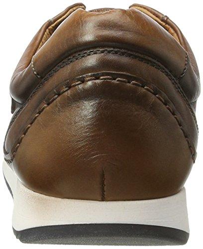 v17 Liverpool M2a Cuero Pikolinos Braun Sneaker Herren xH6BqPt