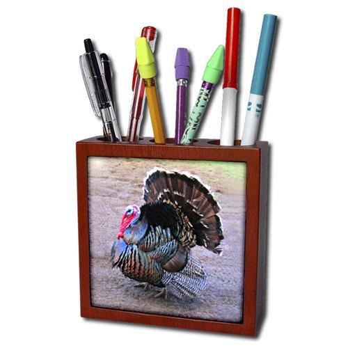 3dRose ph_4042_1 Wild Turkey Tile Pen Holder, 5-Inch