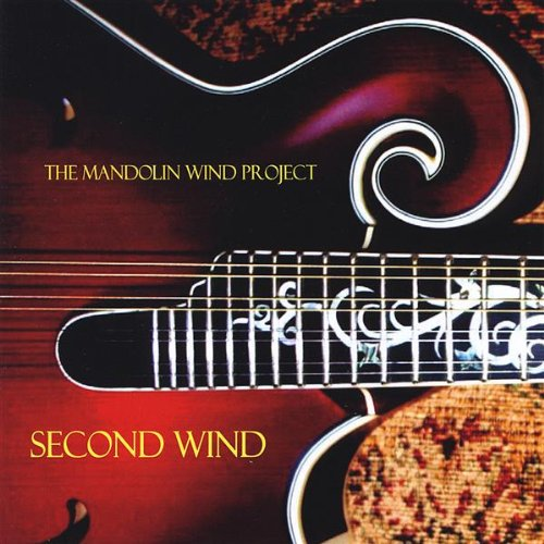 how to play mandolin wind