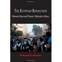 The Egyptian Revolution: Between Hope and Despair, Mubarak to Morsi