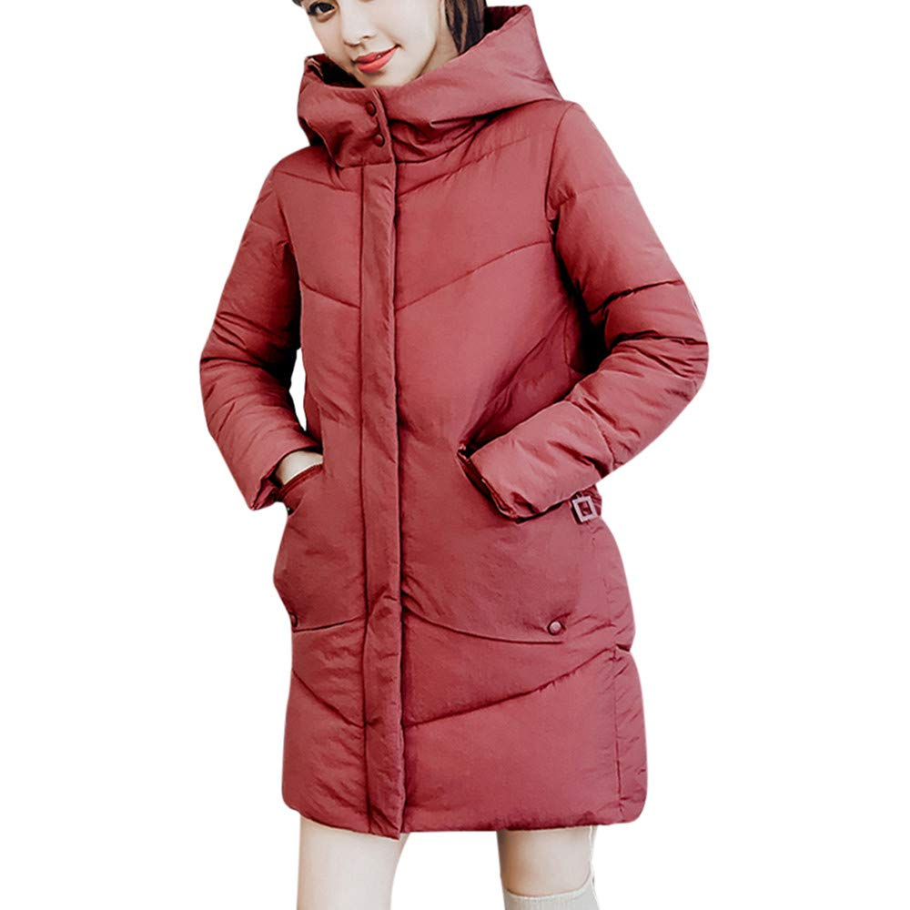 Amazon.com: DICPOLIA Womens Thick Hooded Down Jacket Coat ...