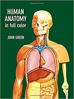 Human Anatomy textbook with many of the muscles and organs on a model