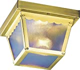 Volume Lighting V7231-2 1-Light Outdoor Ceiling Mount, Polished Brass