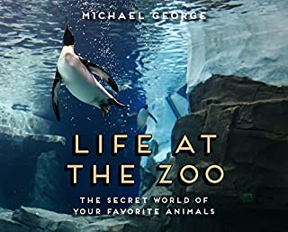 Book Cover: Life at the Zoo
