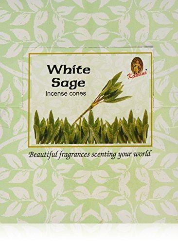 Kamini Cones Incense Case, White Sage, 12 Piece (Cones Incense Sage)