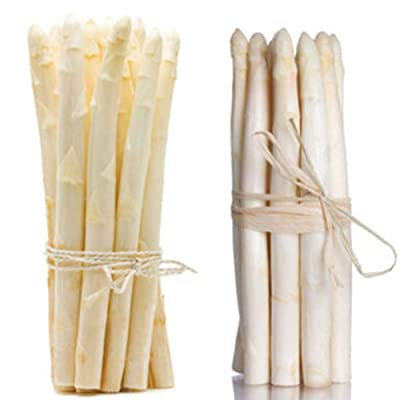 ekqw015l 20Pcs Rare Non-GMO Perennials Plant Organic Vegetables White Asparagus Seeds Garden Flower Plant Seeds Decor : Garden & Outdoor