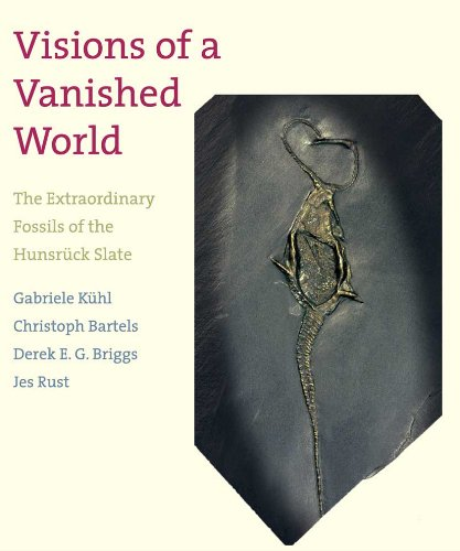 Visions Of A Vanished World: The Extraordinary Fossils Of The Hunsrück Slate