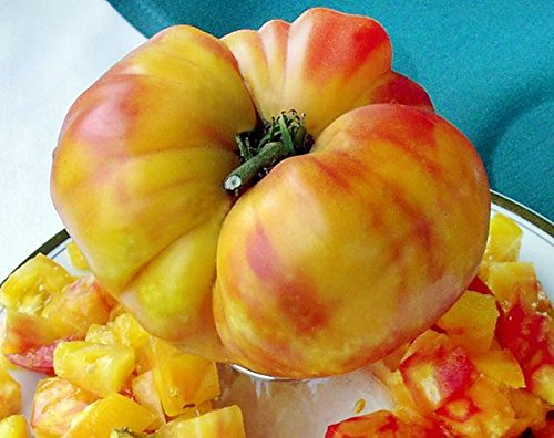 german giant tomato seeds - 3