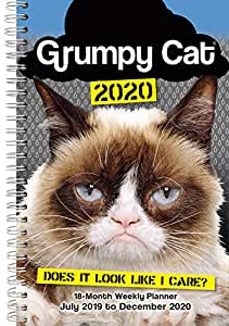 Amazon.com : Grumpy Cat 2020 18-Month Weekly Planner