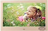 PicaVue Ultra Slim 13.3 Inches Digital Photo Frame High Resolution with Motion Sensor, SD/USB, Plays Photo Slideshow, Video, Audio, Luxury Gold