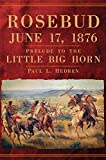 Rosebud, June 17, 1876: Prelude to the Little Big