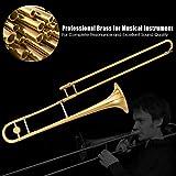 Costzon B Flat Tenor Slide Trombone Brass, Sound