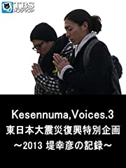 Kesennuma,Voices.3 東日本大震災復興特別企画〜2013 堤幸彦の記録〜