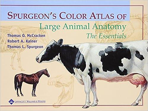 - Spurgeon's Color Atlas Of Large Animal Anatomy: The Essentials:  9780683306736: Medicine & Health Science Books @ Amazon.com