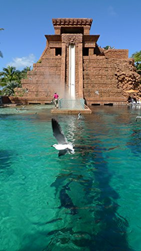 Home Comforts LAMINATED POSTER Mayan Leap of Faith & Shark Tank Atlantis Paradise Island Photo D Ramey Logan by Home Comforts