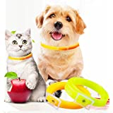 2 Pack Flea and Tick Collar for Cats, Cat Flea and Tick Control - Natural Essential Oil, Adjustable Size, Waterproof - Best Flea and Tick Prevention for Cats - Green & Orange (Cat Collar-33CM)