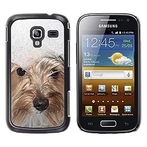 Be Good Phone Accessory // Dura Cáscara cubierta Protectora Caso Carcasa Funda de Protección para Samsung Galaxy Ace 2 I8160 Ace II X S7560M // Snow Winter West Highland White Terrie