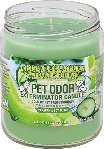 Pet Odor Exterminator Candle 13oz jar, Cool Cucumber & Honeydew ()