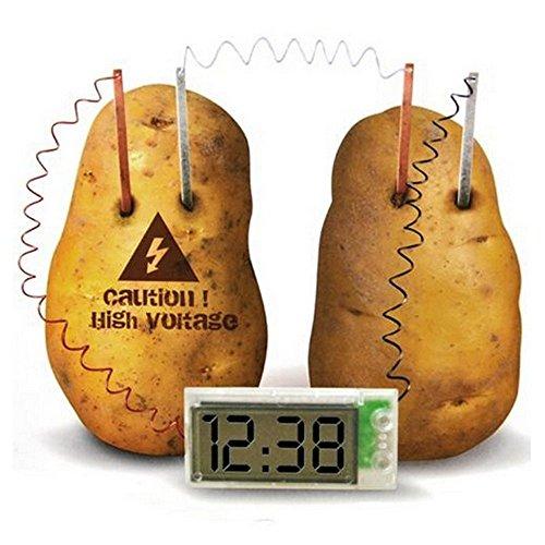 - Kasstino Potato Clock Novel Green Science Project Experiment Kit Kids Lab Home School Toy