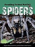 Spiders, Sally Morgan, 1607530481