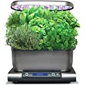 AeroGarden Harvest Grey