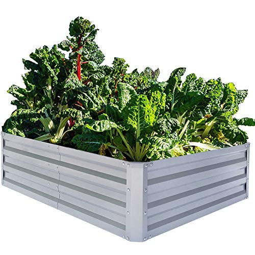 - FOYUEE Galvanized Raised Garden Beds for Vegetables Metal Planter Boxes Outdoor Large Patio Bed Kit Planting Herb, 6x3x1ft
