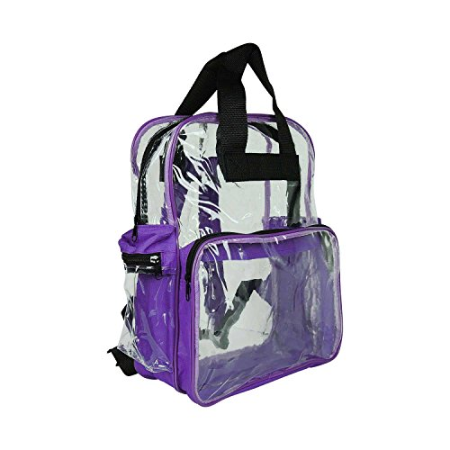 DALIX Small Clear Backpack Bag in Purple