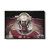 Florida State Seminoles ''Seminole'' Wall Art