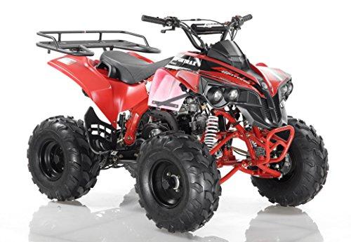 DONGFANG Apollo (AGA-7) ATV 125cc Sportrax (Red)