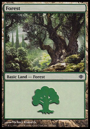 Magic: the Gathering - Forest (249) - Shards of Alara - Foil