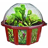 DuneCraft CC-0009 Dome Terrariums-Carnivorous Plants