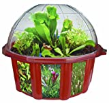 DuneCraft Dome Terrariums - Carnivorous Plants